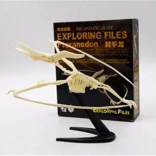 🚚 恐龍考古挖掘模型