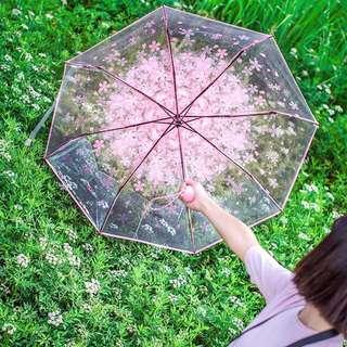 🌸唯美浪漫櫻花透明折疊雨傘🌂💕