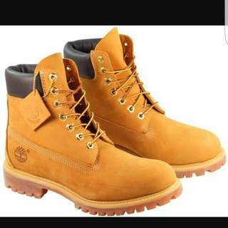 6 Inch Timberland BOOTS