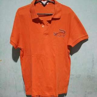 Kemeja Orange XL Merk Crocodile Ori Polo Shirt