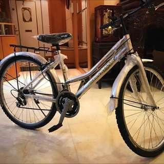 🚚 全新腳踏車