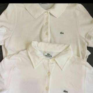 2 Original  White Lacoste Shirt