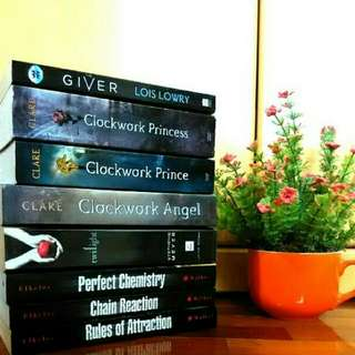 Various Preloved Books