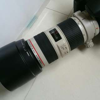 Canon EF 70-200 f4 L IS USM telephoto Zoom lens
