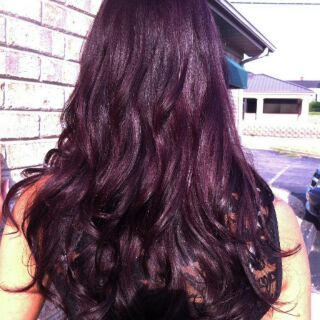 Hair Dye Coloring Powder (Violet Brown)