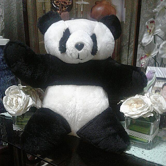 Preloved Panda Bear  Lovingly Called Mr. Panda