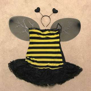 ** REDUCED ** Reversible Bumble Bee & Lady Bug Halloween Costume