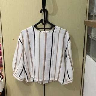 Shirt (zorte)