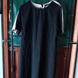 ZARA Two Tones Dress