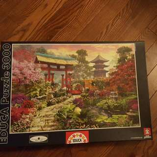 3000 Piece Puzzle - Educa