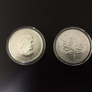 2013 Canadian Maple Leaf Silver Coin   (With Capsule)