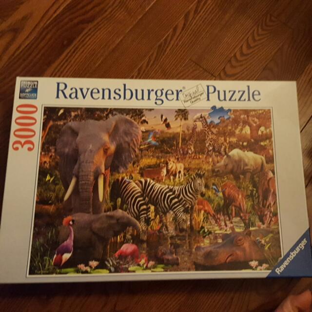 3000 Piece Puzzle - Ravensburger