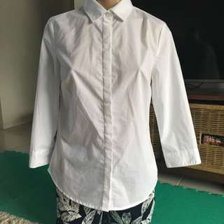 Sleeve Shirts
