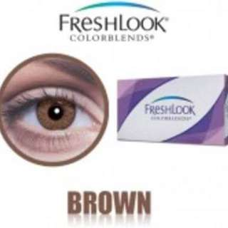 2x Brown Freshlook Colorblends (Plano)