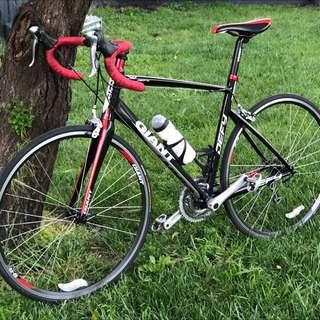 Giant Defy 3 Men's Road Bike
