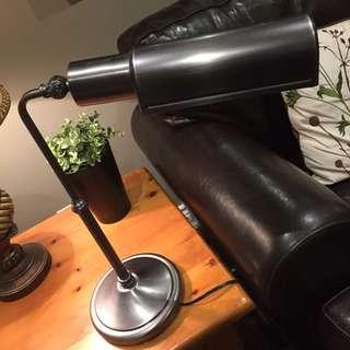 Ott-lite Lamp