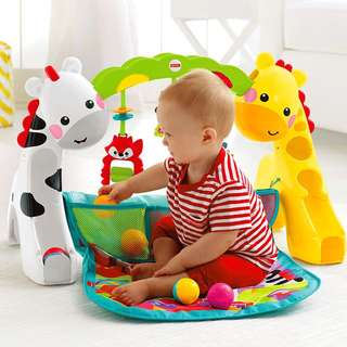 Fisher Price Newborn-to-Toddler Play Gym