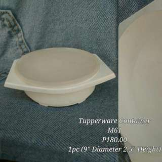Tupperware Container