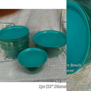 Tupperware Bowls With Cover