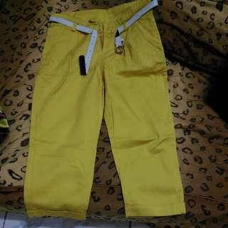 芥末黃7分褲