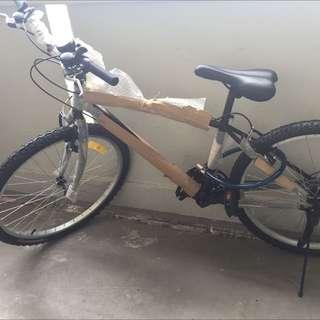 Dura Sporty Bike
