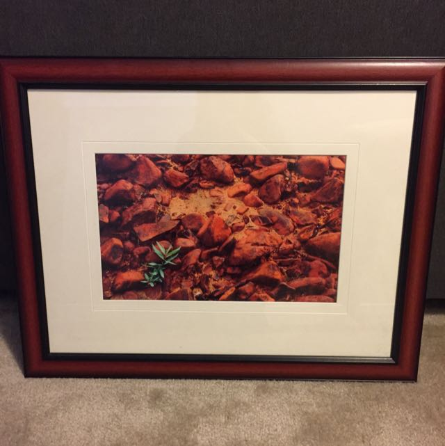 Beautiful Artwork By Local Artist - Professionally Framed