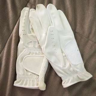 Dressage/Show Gloves