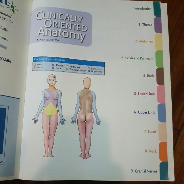 Moore Dalley Agurs Clinically Oriented Anatomy 6th Ed 2010