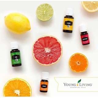 Youngliving essentials oils