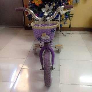 Princess Purple Bike