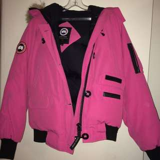 Pink Canada Goose