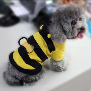 Cute Bumble Bee Costume for Pets Cats & Dogs
