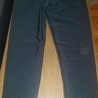 Bnwt Seduction Shiny Black Legging