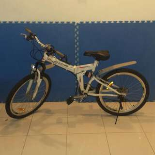 Foldable Bicycle (Sold)