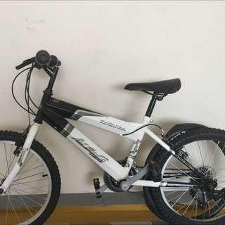 """20"""" Aleoca Catana Bike"""