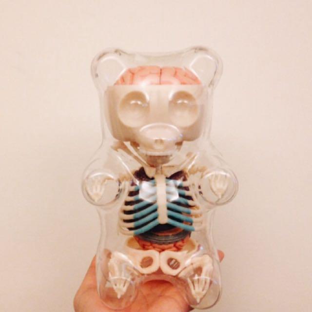 [美國代購]4D Master X Jason Freeny半解剖骨頭骨骼骷髏透明小熊軟糖模型