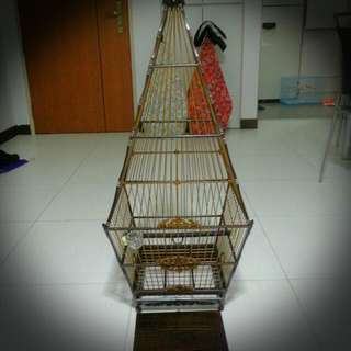 17 stick indonesia made jumbul A cage for sale