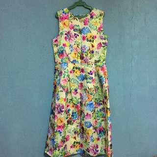 Midi Dress (Never Worn)