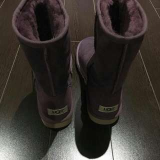 Brand New Uggs Classic Short Size 8