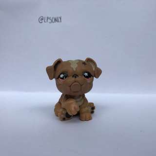 Littlest Pet Shop Bulldog