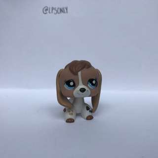 Littlest Pet Shop Beagle