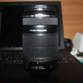 Canon IS 55-250mm Macro Lens