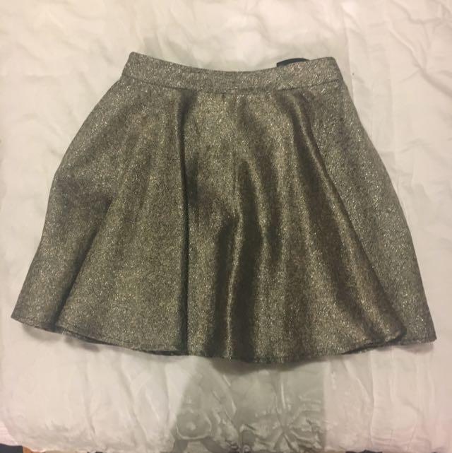 Ladakh Shimmery Champagne Skirt. High Waisted