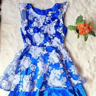 Organza Silky Blue Dress