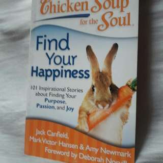 Chicken Soup For The Soul : Find Your Happiness