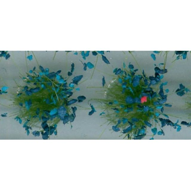"""[H0 1/87, N 1/150] Model Grass Tufts XL """"Wild Flowers"""", 104 pcs with 4 different types [Noch] NEW"""