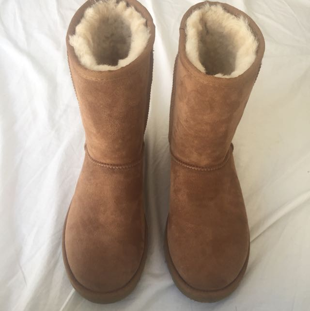 Short Classic Uggs In Chestnut Size 7 Womens