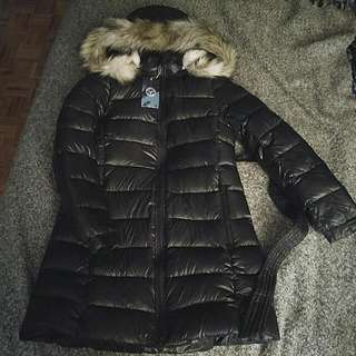 American Eagle Winter Jacket