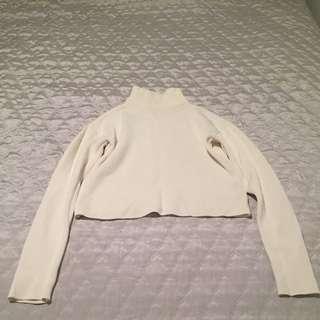 Size S ZARA Turtle Neck Crop Top