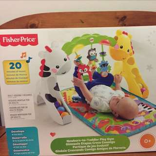 new fisher price newborn to toddler play gym